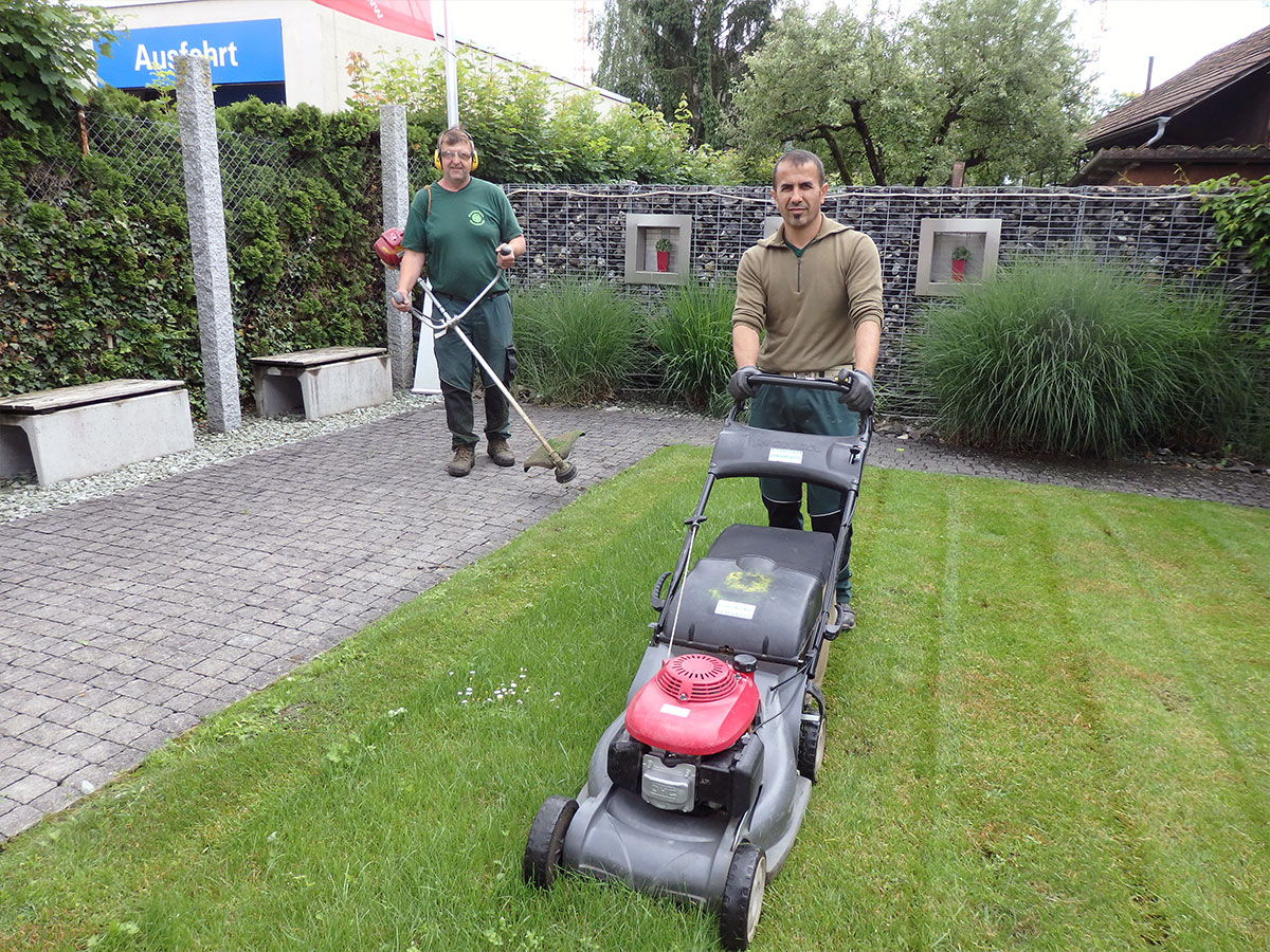 Gartenpflege Gartenbau Baumpflege Wasser Im Garten Zimmermann